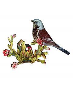 Miho Bird - Latin Lover